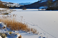 Frozen Rydal Water Royalty Free Stock Photo