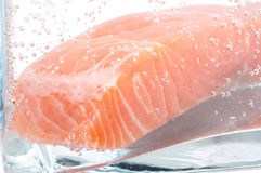 Frozen salmon Stock Image