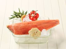 Frozen salmon fillet Royalty Free Stock Photography