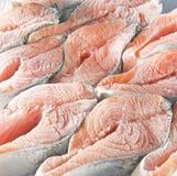 Frozen salmon steaks Stock Photography