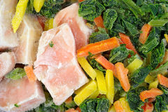 Frozen salmon and vegetables Royalty Free Stock Photo