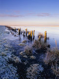 Frozen saltmarsh landscape Stock Photo