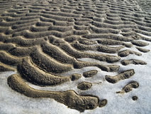 Frozen sand and ice pattern. Ice and sand created abstract background Royalty Free Stock Photos