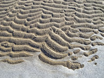 Frozen sand and ice pattern. Ice and sand created abstract background Royalty Free Stock Image