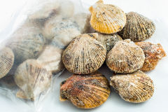 Frozen scallop shells. Packaged for sale in the store Stock Photo