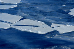 Frozen sea. Picture of icebergs on sea in the winter time Royalty Free Stock Photo