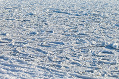 Frozen sea. Stock Images