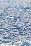 Frozen sea. Stock Photography