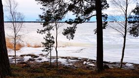 Frozen sea. Beautiful scenery of frozen sea Stock Photography