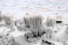Frozen sea coast Royalty Free Stock Image