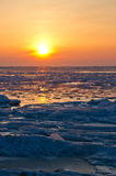 Frozen sea at early morning Stock Image