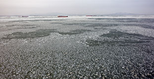 Frozen sea ice pattern Stock Images