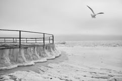 The frozen sea and the iron round pier in ice floes. Ice winter expanse of the sea. Minimalism. Monotone, black and white Royalty Free Stock Image