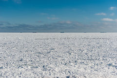 Frozen sea and the ships on horizon Stock Image