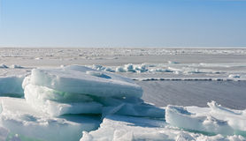 Frozen sea. Royalty Free Stock Photography
