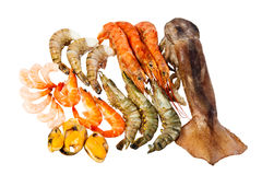Frozen seafood Stock Photos