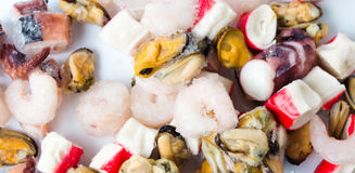 Frozen seafood mix of shrimps surimi mussels and octopus Stock Photos