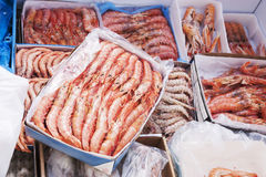 Frozen seafood Royalty Free Stock Photography