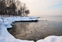 Frozen shore. Of new ice with patterns Stock Photo