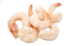 Frozen shrimp Royalty Free Stock Image