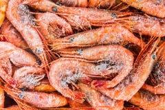 Frozen shrimp packaged Stock Images