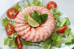 Frozen shrimp ring Royalty Free Stock Photos