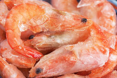 Frozen shrimps Royalty Free Stock Images