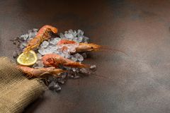 Frozen shrimps or langostinos with lemon on ice in brown burlap bag or sackcloth on dark background. stock images