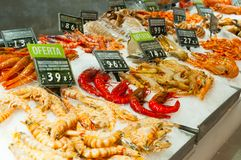 Frozen shrimps at market stall. Frozen shrimps closeup at market stall stock image