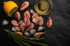 Frozen shrimps  with rosemary, lemon and olive oil on the black stone table horizontal Stock Photos