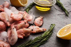 Frozen shrimps  with rosemary, lemon and olive oil on the black stone table Royalty Free Stock Photography