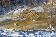 Frozen slough in winter Stock Image