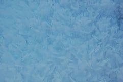 Frozen snow Stock Photo