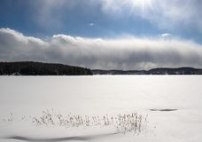 Frozen Haliburton Lake on a bright sunny day. A frozen snow covered lake in Haliburton with sun bouncing off low dense clouds and reeds in the foreground stock images