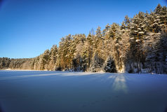 Frozen snowed lake and pine forest in sunny frosty winter day Stock Photo