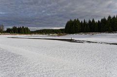 Frozen snowy lake near forest stock images