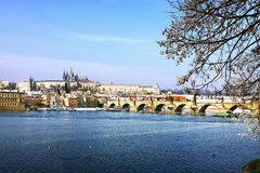 Frozen Snowy Prague gothic Castle Royalty Free Stock Photo