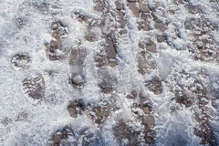 Frozen sole prints Royalty Free Stock Photography