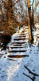 The frozen stairs royalty free stock images