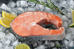 Frozen steak of salmon on ice cubes. With lime lemon and rosemary. top view stock photo