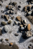 Frozen Stone on West Coast Beach Royalty Free Stock Photos