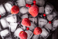 Frozen strawberries and cranberries lying on ice cube. Dark background Stock Photos