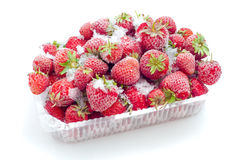 Frozen strawberries in opened box Royalty Free Stock Photography