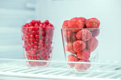 Frozen strawberries and red currants Stock Photography