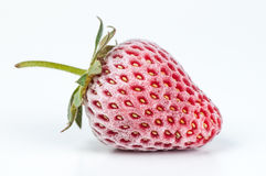 Frozen strawberry on white background Stock Photography