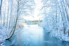 Free Frozen Stream Canal And Trees With Snow. Winter In Scandinavia. Swedish Landscape Wallpaper. Nature Stock Images - 167064044