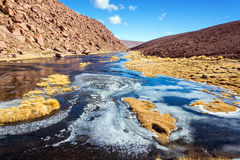 Frozen Stream in Chile Royalty Free Stock Photography