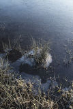 Frozen stream detail on Winter morning landscape Royalty Free Stock Photos
