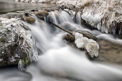 Frozen stream in forest Royalty Free Stock Image