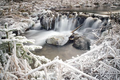 Frozen stream in forest Stock Photos